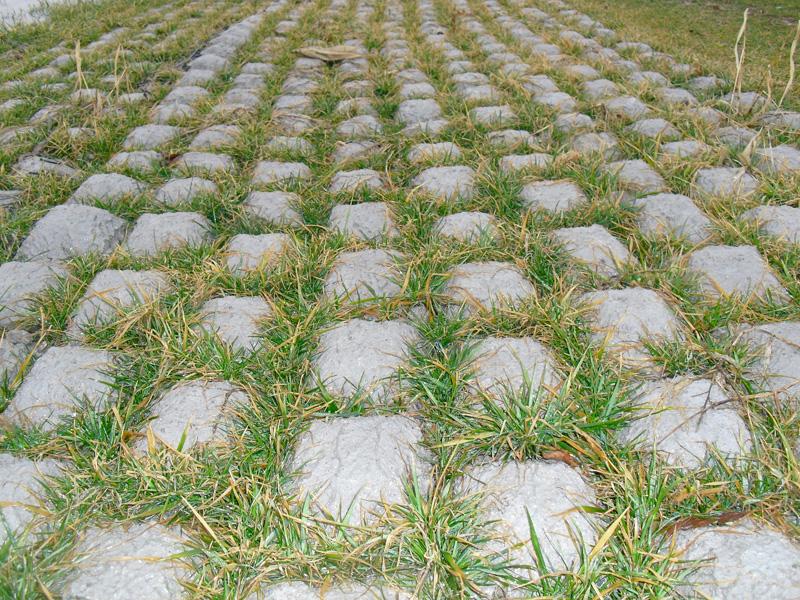 Strataweb Erosion Control